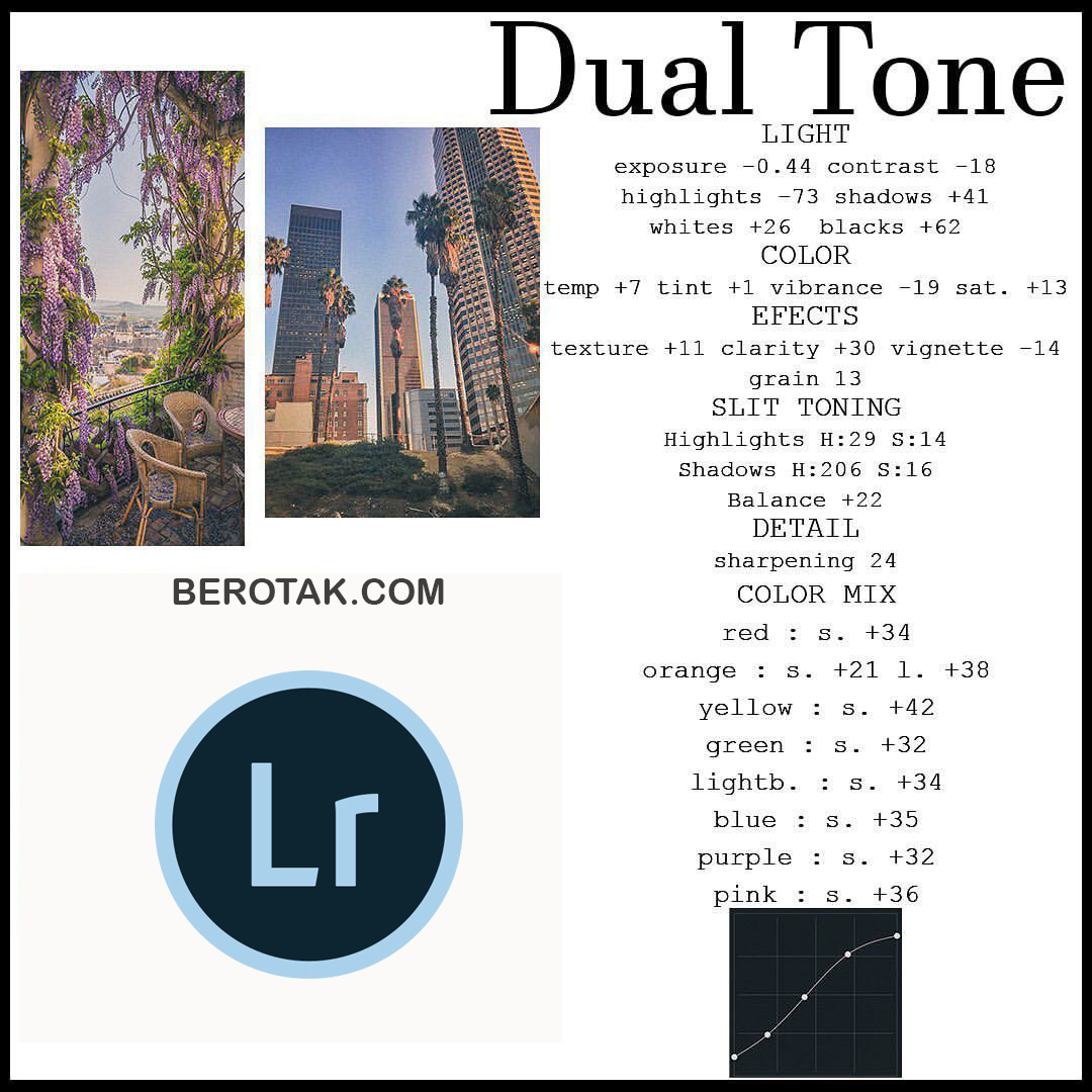 Rumus Lightroom Dual Tone 1