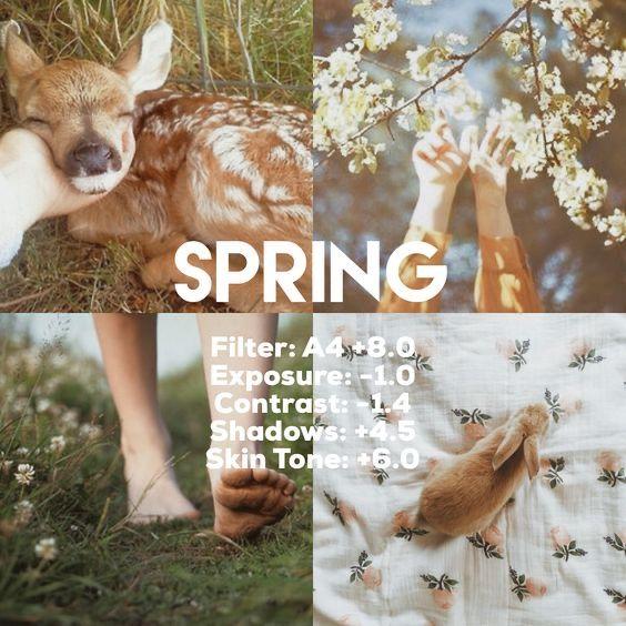 Rumus VSCO Spring