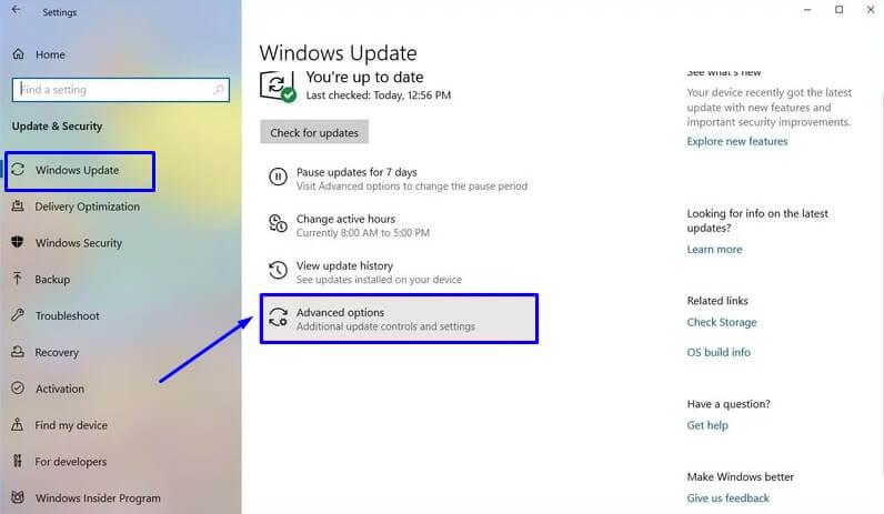 Pilih Advanced options di Windows Update