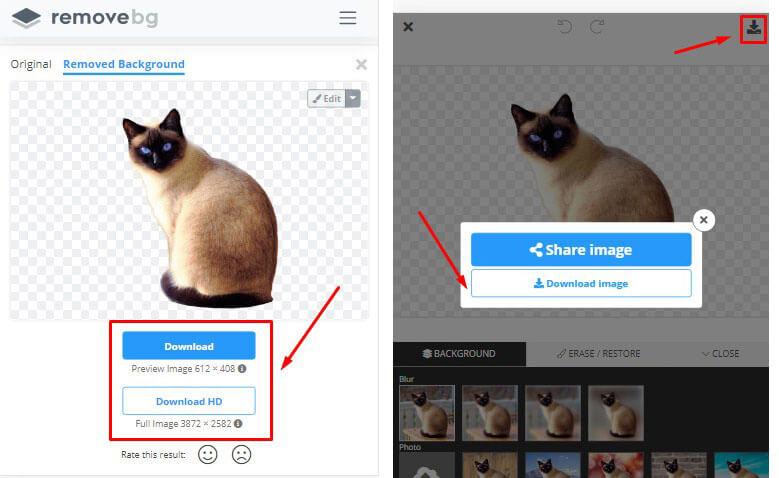 Download foto dan simpan hasil menghapus background foto