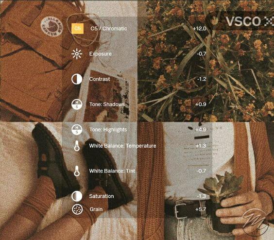 5 Preset VSCO Aesthetic brown