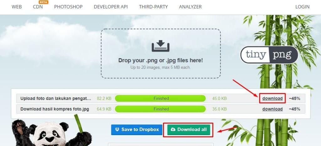 Cara Mengecilkan Ukuran Foto di HP Secara Online lewat TinyPNG