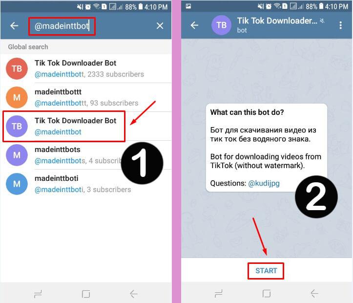 Cara Download Video Tiktok Tanpa Watermark di Telegram dengan BOT madeinttbot