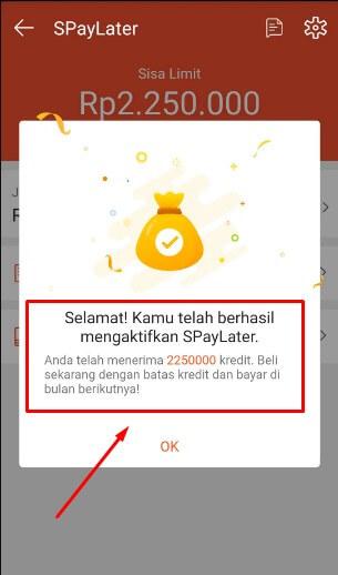 Sukses Berhasil aktifkan SPayLater